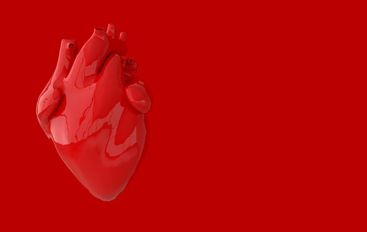 Por qué tu corazón es una máquina casi perfecta