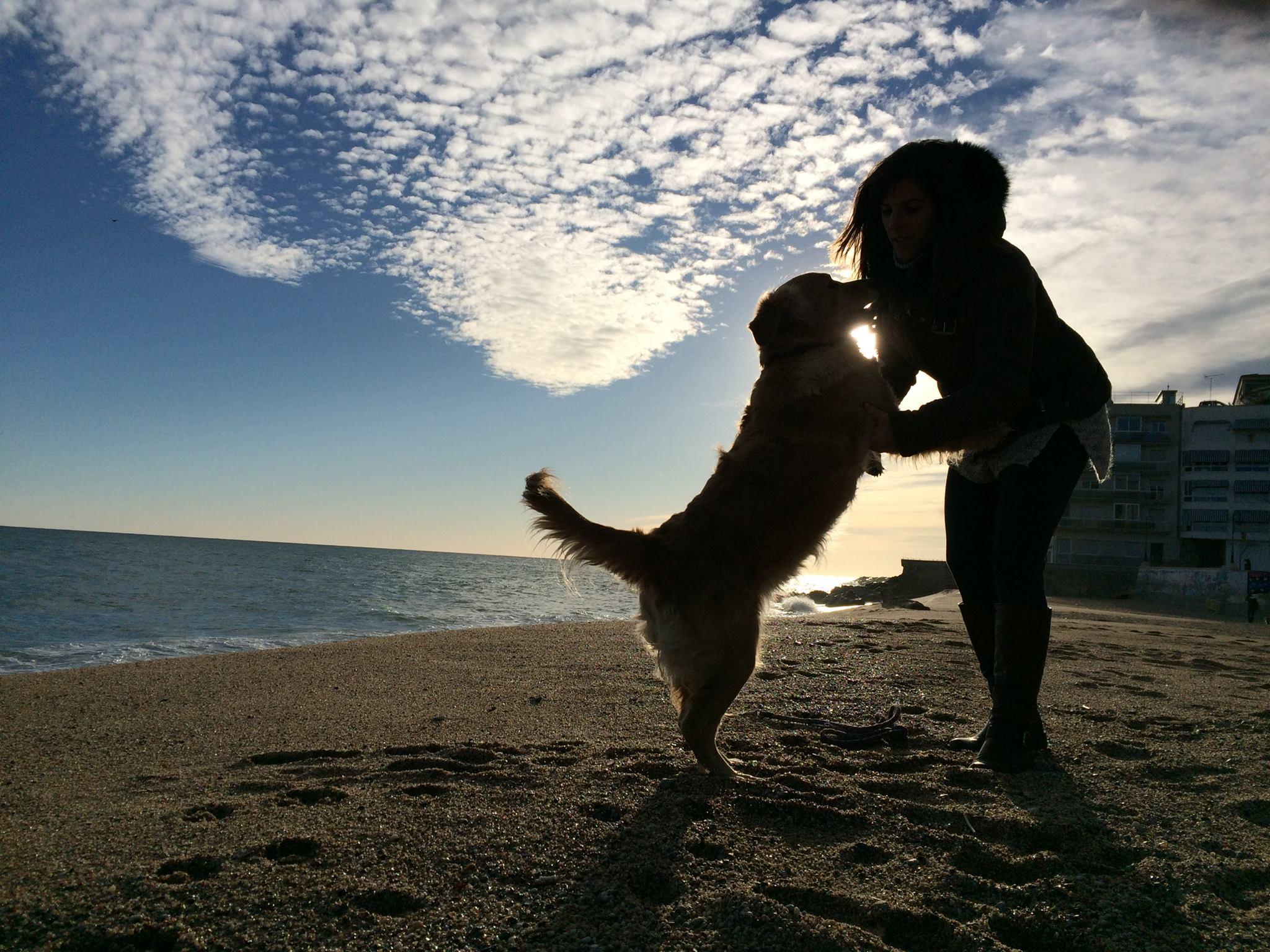 Las personas que viven con perros gozan de una mejor salud cardiovascular - Animales con personas apareandose ...